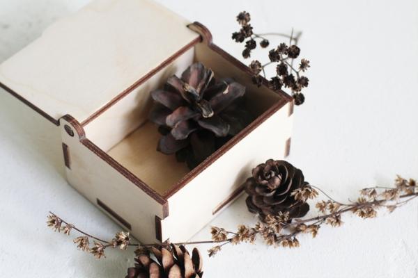 Коробка с откидной крышкой (набор 10шт.)